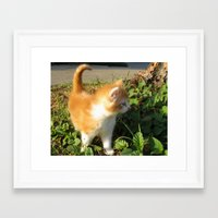 bill Framed Art Prints featuring Bill by aintevenconcerned