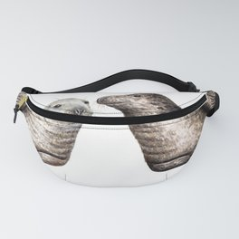 Grey seals(Halichoerus grypus) Fanny Pack