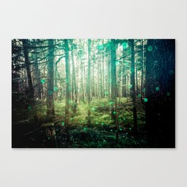Magical Green Forest - Nature Photography Canvas Print
