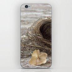 Found Bird Nest iPhone & iPod Skin