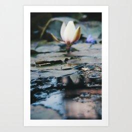 Catatonic waters Art Print