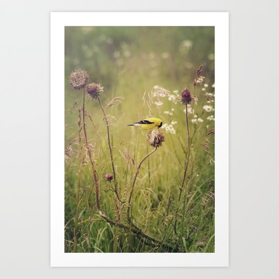 Life in the Meadow Art Print