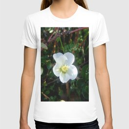 flower and light - White flower 2 T-shirt