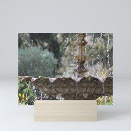 Fountain of the Sensory Garden Mini Art Print