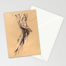 Fontana dei Quattro Fiumi (Drapery Study) Stationery Cards