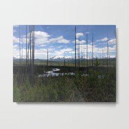 Montana 2 Metal Print