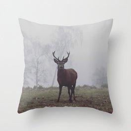 Foggy Richmond Park Throw Pillow
