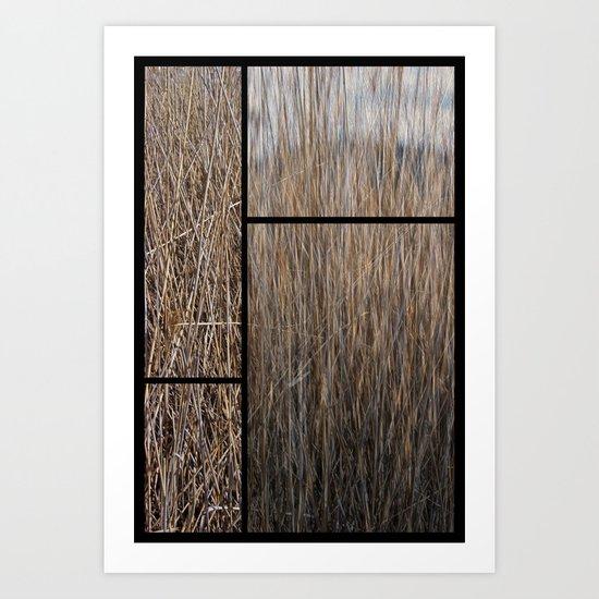Reeds abstract Art Print