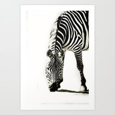 Zebra - paint Art Print