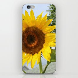une seule fleur iPhone Skin