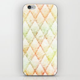dracones iPhone Skin