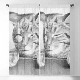 Sleepy Cat Drawing - Black White Graphic Blackout Curtain