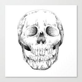 Skull Lines Canvas Print