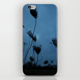 Queen Anne's Lace at Dusk iPhone Skin