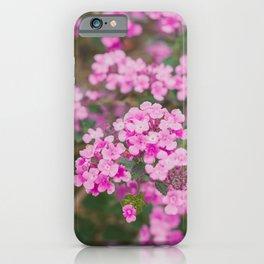 Purple Flowers in the Field iPhone Case