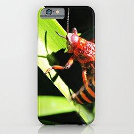 Red Hopper iPhone Case