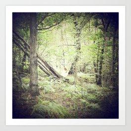 Melancholic Fairy Lost Her Wings In The Woods - n. III Art Print