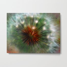 Dandelion Eye Metal Print