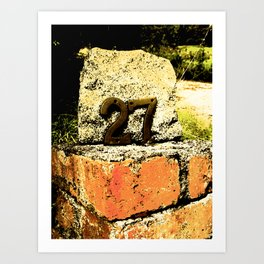 Bricks Below Art Print