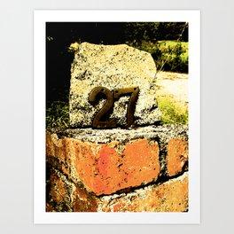 Bricks Below Art Print