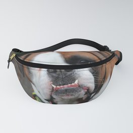 Boxer dog friend Fanny Pack