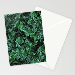 Dew foliage pattern - version two Stationery Cards
