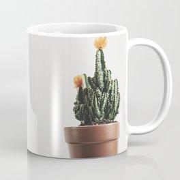 Close up of a small cactus Coffee Mug