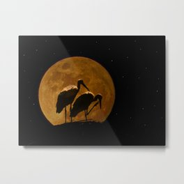 Stork's nest in the moon Metal Print