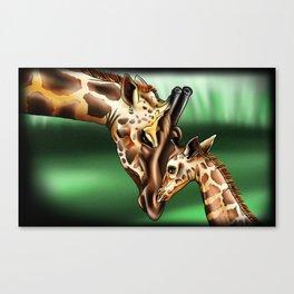 Nurturing Giraffes Canvas Print
