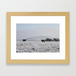 Winter Sheep Framed Art Print