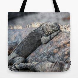 Galapagos baby marine iguana Tote Bag