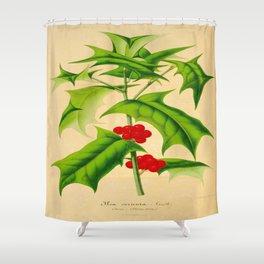 ILEX CORNUTA Vintage Botanical Floral Flower Plant Scientific Illustration Shower Curtain