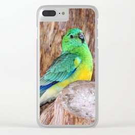 Graceful Parakeet Clear iPhone Case