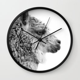 Llama Drama   Alpaca Animal Photography Wall Clock