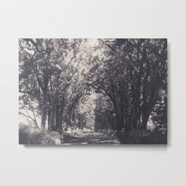 Tunnel of Trees - Kauai, Hawaii Metal Print