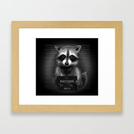 Raccoon Mugshot Framed Art Print
