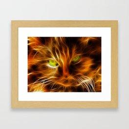 Persian Kitty Framed Art Print