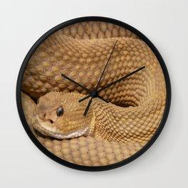 Brown Rattlesnake  Wall Clock