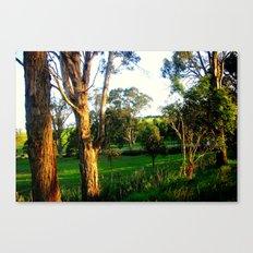 Evening light, Country Farmlands Canvas Print