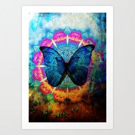buttefly Art Print