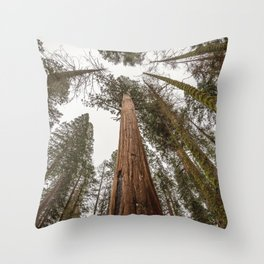 Sequoia Stretch - Nature Photography Throw Pillow
