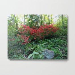 Spring Glory Metal Print