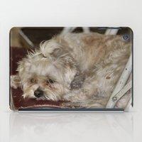 teddy bear iPad Cases featuring Teddy Bear by IowaShots