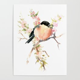 Bullfinch and Spring, Peach colored Floral bird art, spring soft colors Poster