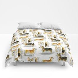 Corgi Congregation Comforters