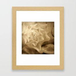Seaside Secrets Framed Art Print