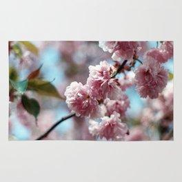 Soft Spring Rug