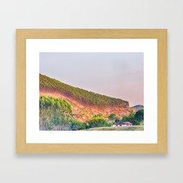 Eucalyptus plantation Framed Art Print