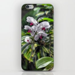 Tropical Orchids iPhone Skin