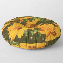Sunshine Sprouts Floor Pillow